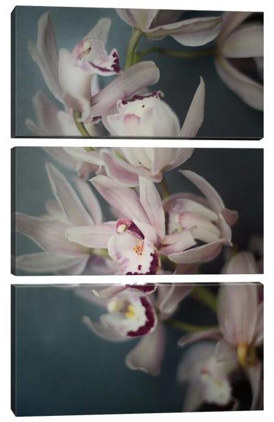 Dark Orchid I Canvas Art Print