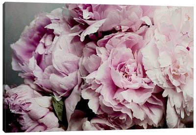 Peonies Galore II Canvas Art Print