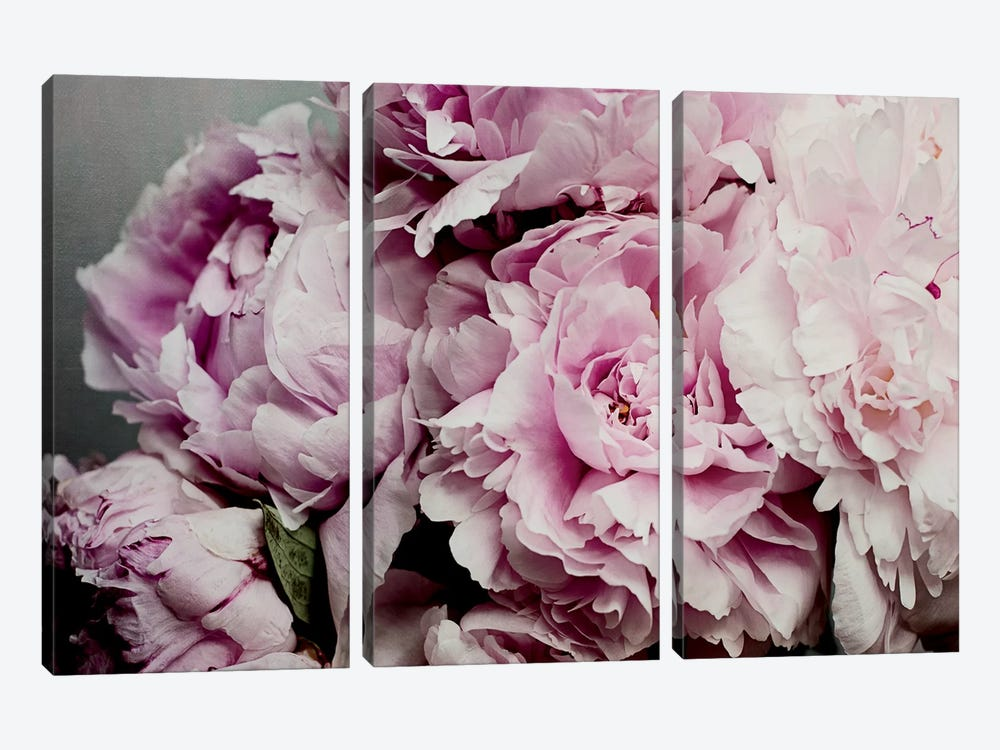 Peonies Galore II by Elizabeth Urquhart 3-piece Canvas Print