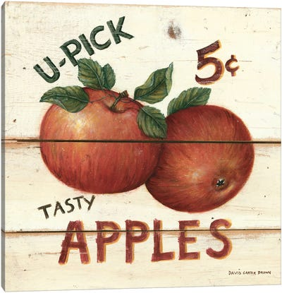 Tasty Apples Canvas Art Print