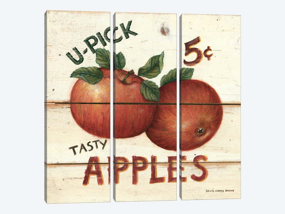 Tasty Apples by David Carter Brown 3-piece Canvas Print
