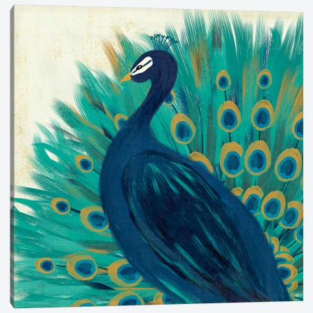 Proud As A Peacock II Canvas Print #WAC4726} by Veronique Charron Canvas Print