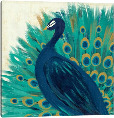 Proud As A Peacock II Canvas Art Print