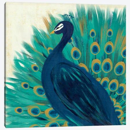 Proud As A Peacock II Canvas Print #WAC4726} by Veronique Charron Canvas Print