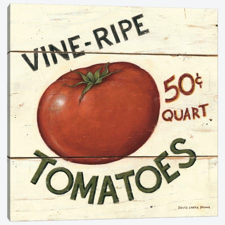 Vine Ripe Tomatoes Canvas Print #WAC473} by David Carter Brown Canvas Print
