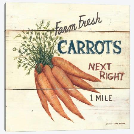 Farm Fresh Carrots Canvas Print #WAC474} by David Carter Brown Canvas Artwork