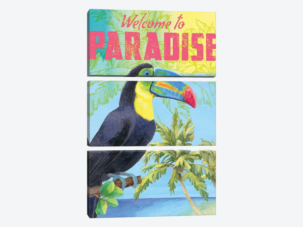 Island Time Parrot by Beth Grove 3-piece Canvas Art Print
