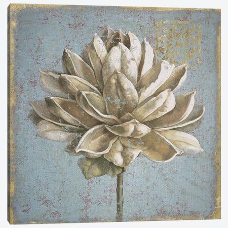 Seed Pod I Canvas Print #WAC4755} by Beth Grove Canvas Wall Art