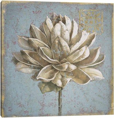 Seed Pod I Canvas Art Print