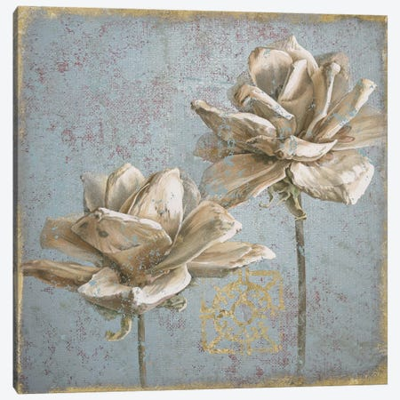 Seed Pod II Canvas Print #WAC4756} by Beth Grove Canvas Wall Art