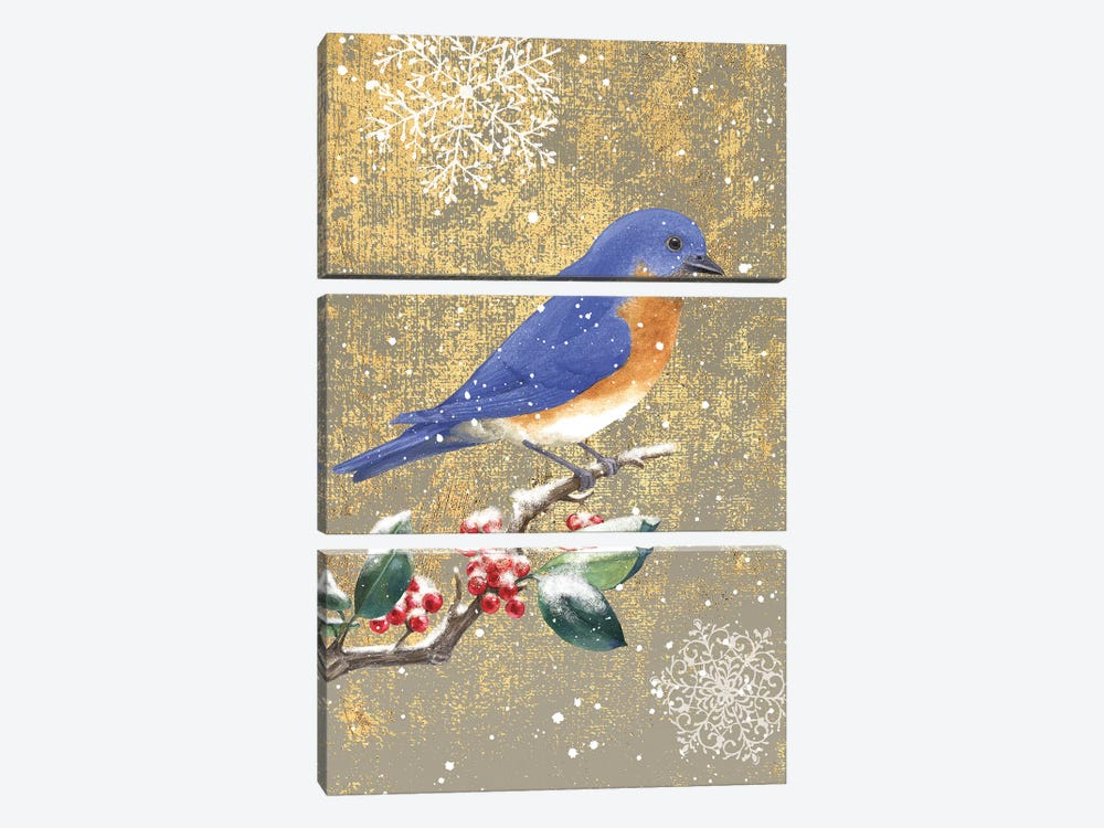 Bluebird II by Beth Grove 3-piece Canvas Artwork