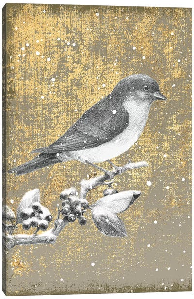 Winter Birds Series: Bluebird III Canvas Art Print