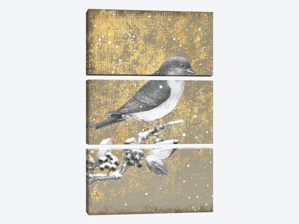 Bluebird III by Beth Grove 3-piece Canvas Art Print
