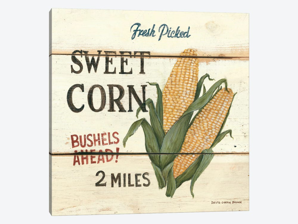 Fresh Picked Sweet Corn by David Carter Brown 1-piece Canvas Art Print
