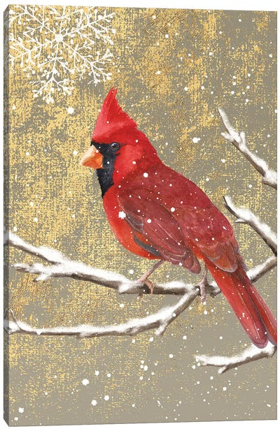 Winter Birds Series: Cardinal I Canvas Art Print