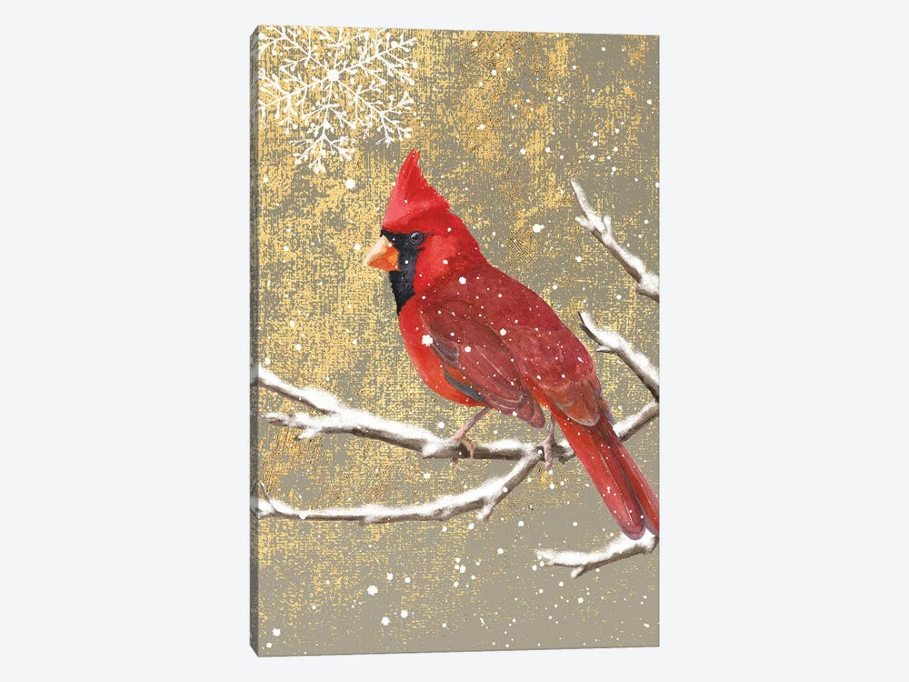 Winter Birds Series: Cardinal I by Beth Grove 1-piece Canvas Art Print