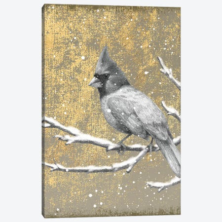 Cardinal II Canvas Print #WAC4761} by Beth Grove Canvas Artwork