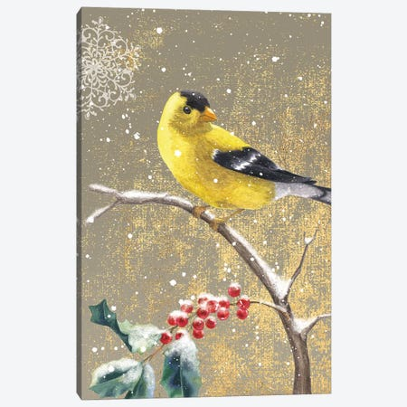 Goldfinch II Canvas Print #WAC4764} by Beth Grove Canvas Print