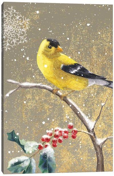 Winter Birds Series: Goldfinch II Canvas Print #WAC4764