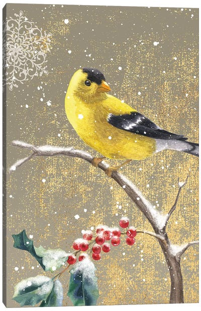 Goldfinch II Canvas Art Print