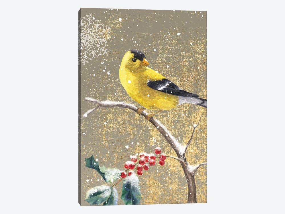 Winter Birds Series: Goldfinch II by Beth Grove 1-piece Canvas Art Print
