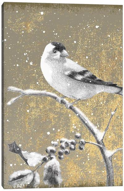 Winter Birds Series: Goldfinch III Canvas Print #WAC4765
