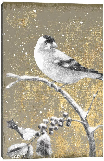 Goldfinch III Canvas Art Print