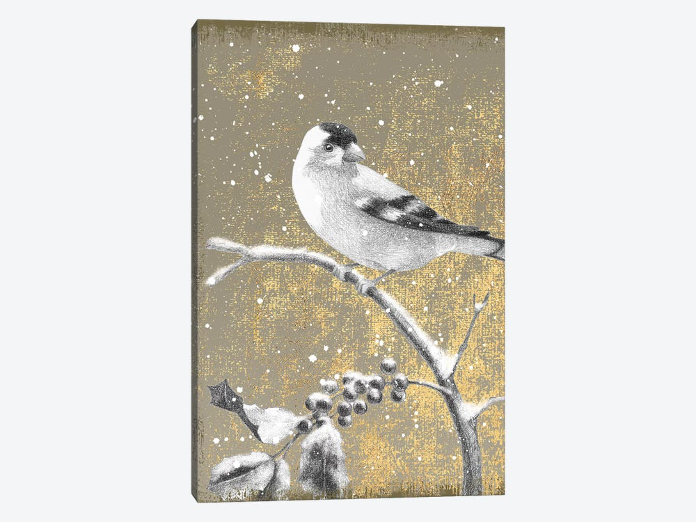 Goldfinch III by Beth Grove 1-piece Canvas Artwork