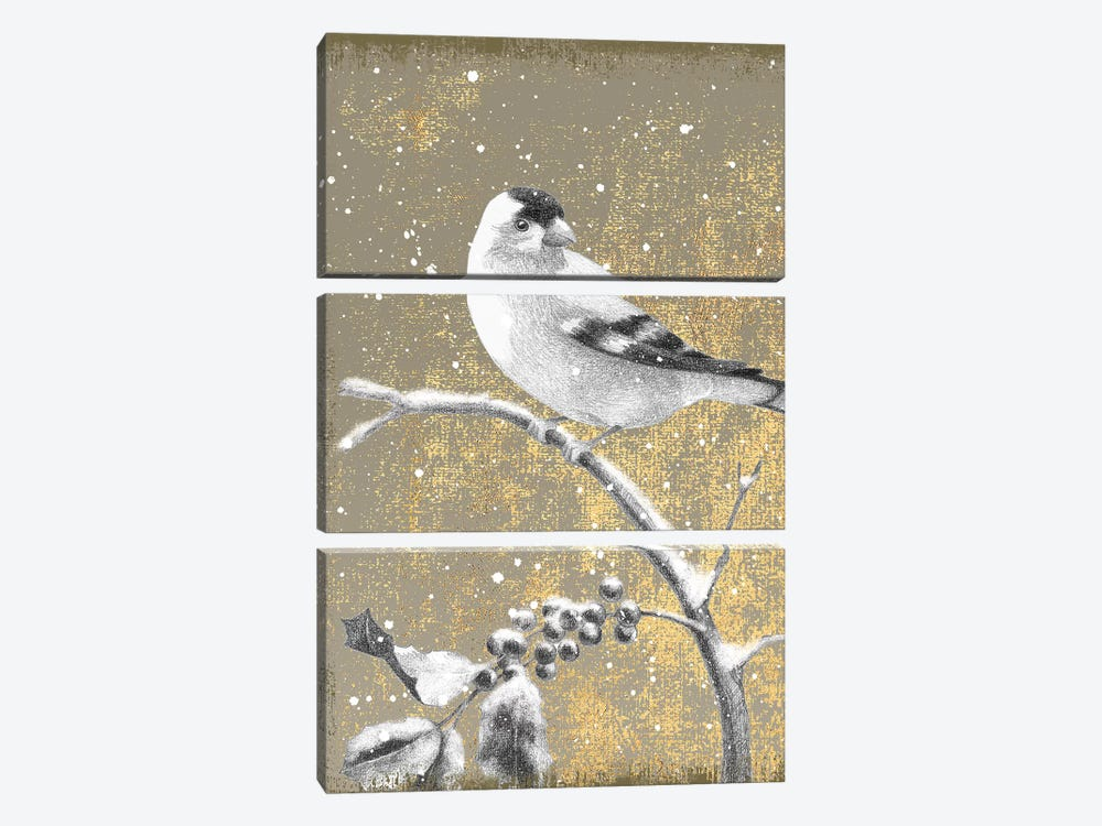 Goldfinch III by Beth Grove 3-piece Canvas Art