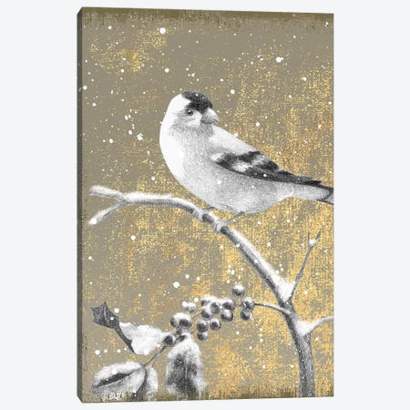 Goldfinch III Canvas Print #WAC4765} by Beth Grove Canvas Art Print