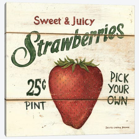 Sweet and Juicy Strawberries Canvas Print #WAC476} by David Carter Brown Canvas Wall Art