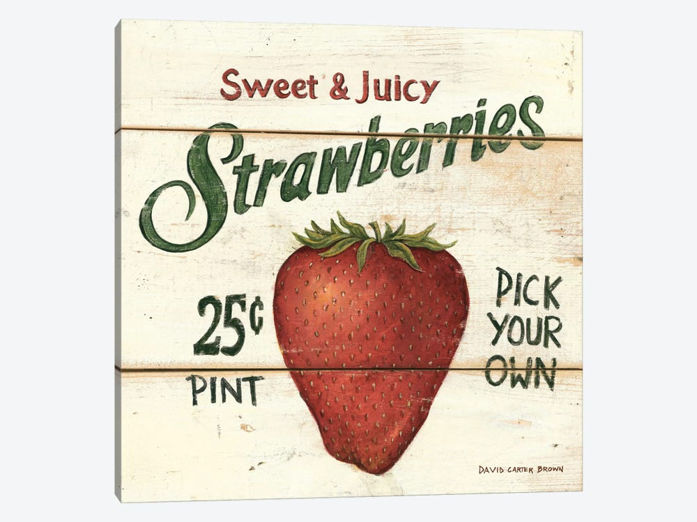 Sweet and Juicy Strawberries by David Carter Brown 1-piece Canvas Artwork
