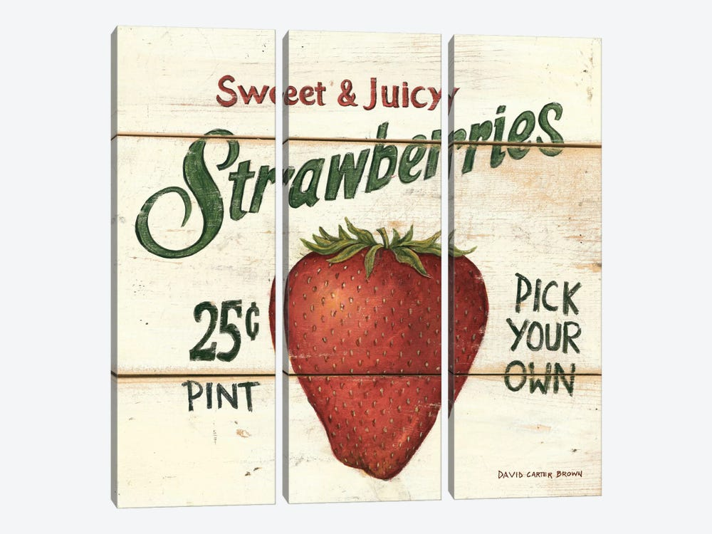 Sweet and Juicy Strawberries by David Carter Brown 3-piece Canvas Artwork