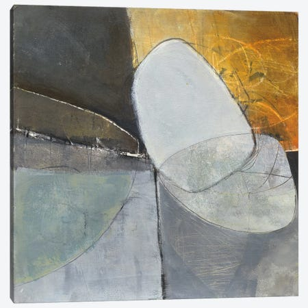 Abstract Pebble II Canvas Print #WAC4780} by Jane Davies Canvas Art