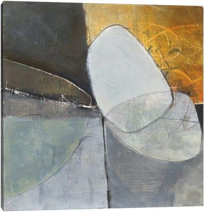Abstract Pebble II Canvas Print #WAC4780
