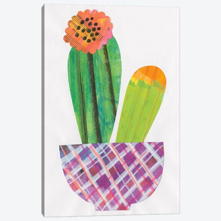 Collage Cactus II Canvas Print #WAC4802} by Melissa Averinos Art Print