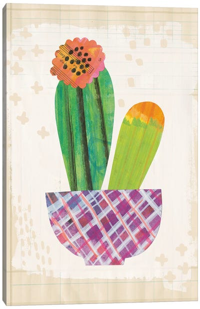 Collage Cactus II.A Canvas Art Print