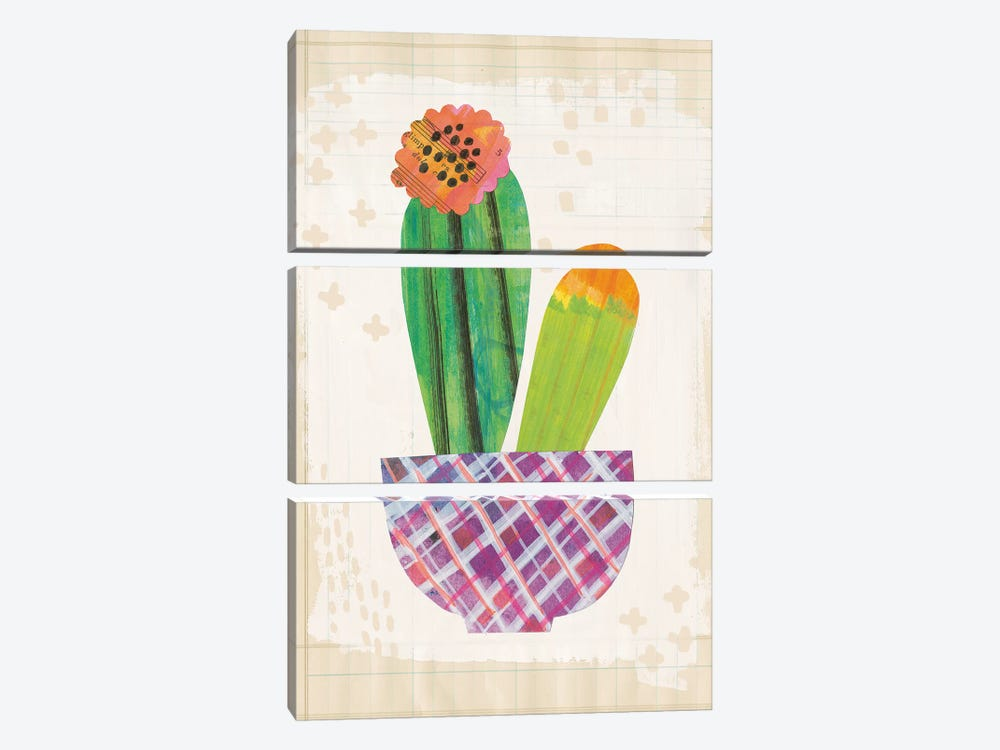 Collage Cactus II.A by Melissa Averinos 3-piece Canvas Wall Art