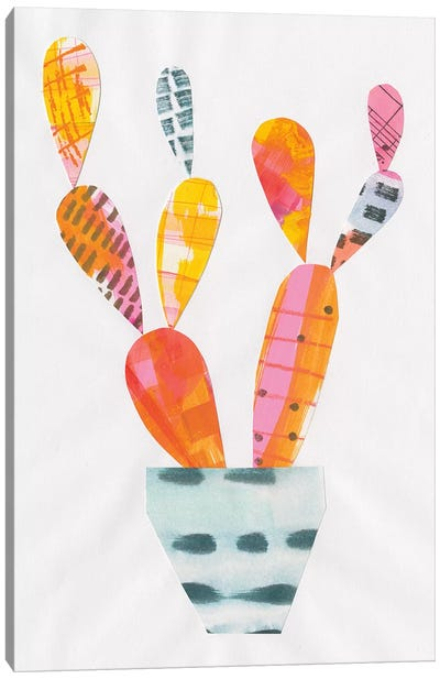Collage Cactus IV Canvas Print #WAC4806