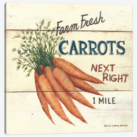 Farm Fresh Carrots Canvas Print #WAC482} by David Carter Brown Canvas Art