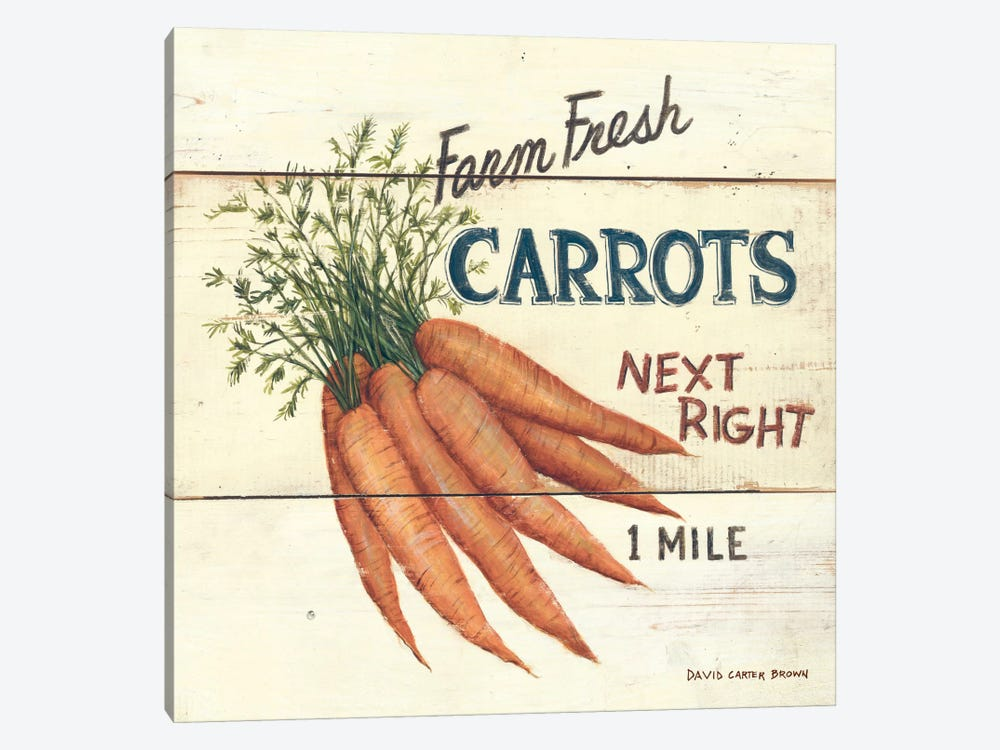 Farm Fresh Carrots by David Carter Brown 1-piece Art Print