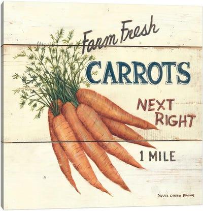 Farm Fresh Carrots Canvas Art Print