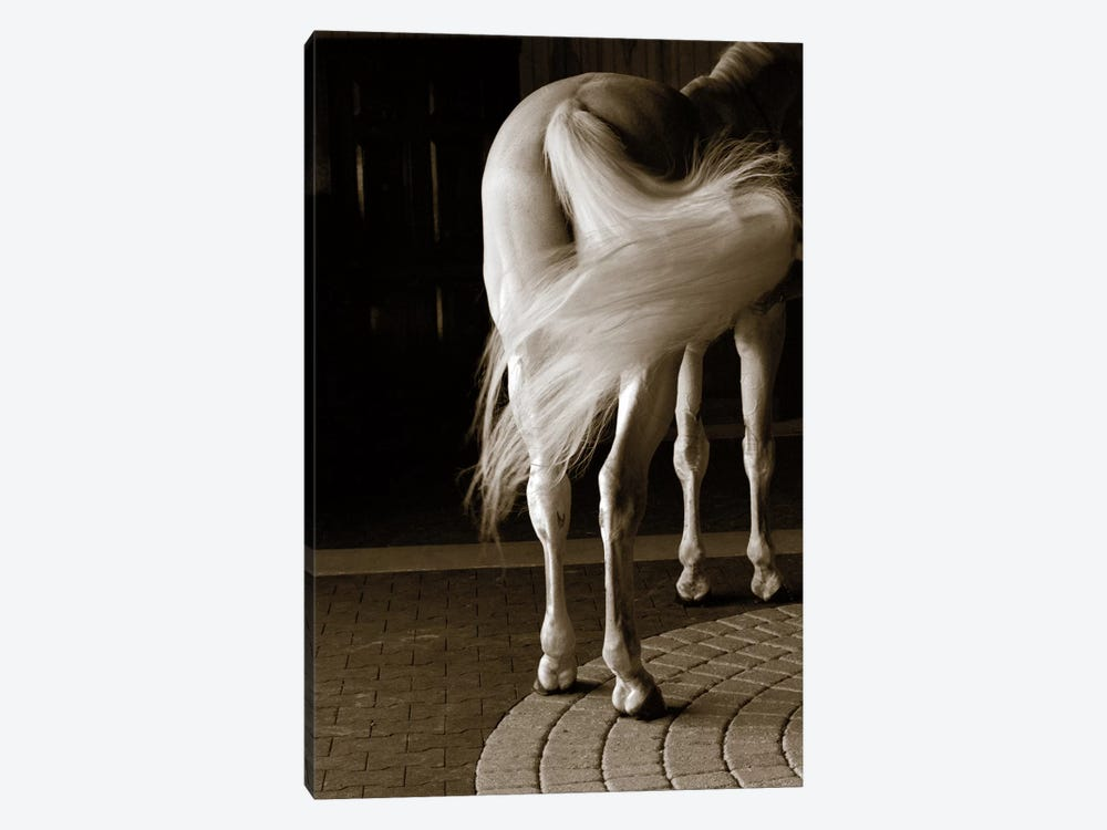Swoosh by Jim Dratfield 1-piece Art Print
