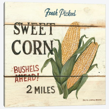 Fresh Picked Sweet Corn Canvas Print #WAC483} by David Carter Brown Canvas Wall Art