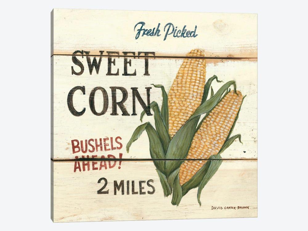 Fresh Picked Sweet Corn by David Carter Brown 1-piece Canvas Art