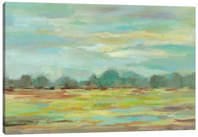 Teal Forest Canvas Print #WAC4862