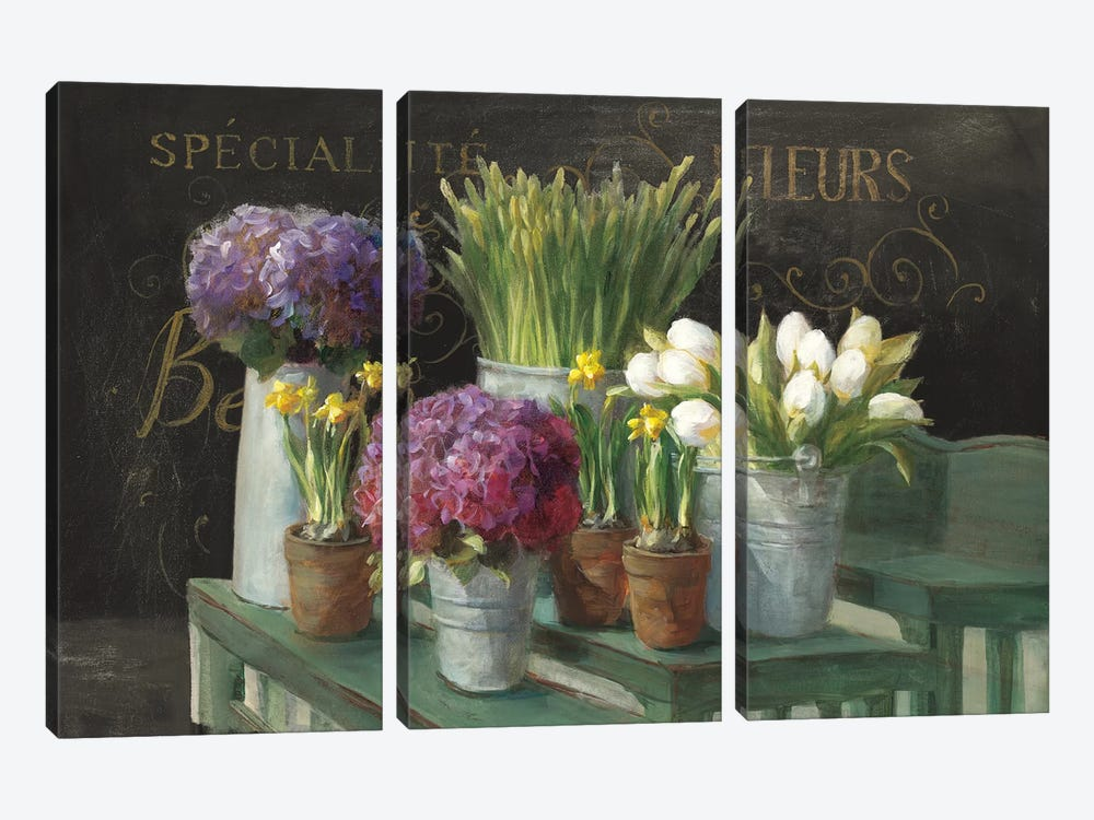 Les Fleurs Printemps On Black by Danhui Nai 3-piece Canvas Artwork
