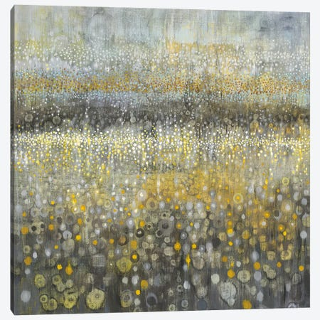 Rain Abstract II Canvas Print #WAC4870} by Danhui Nai Canvas Wall Art