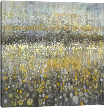 Rain Abstract II Canvas Art Print