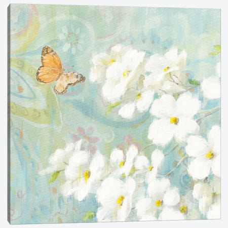 Spring Dream III Canvas Print #WAC4872} by Danhui Nai Canvas Art
